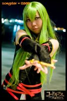 The Power of Geass by songster69