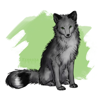 Dark Arctic Fox by Rizuuki