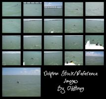 Dolphin Stock Reference Images by Oddstuffs