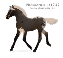 Foal #1747 by NorthEast-Stables