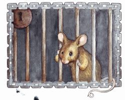Mouse in cage by Fenster