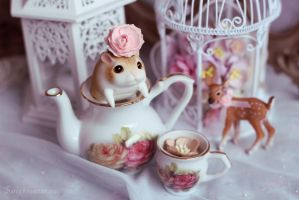 Lettie's teatime by Sarqq