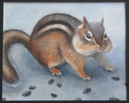 Chipmunk: Realistic Rendering by drawmeapicture