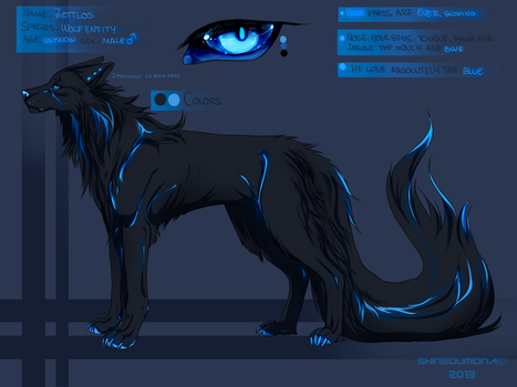 Zettlos new reference by SouOrtiz