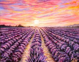 Provence Lavender Field at Sunset by Manukahoney7