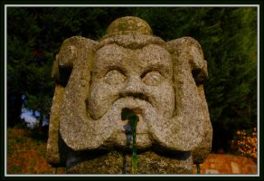 Detail of the Old Fountain by FilipaGrilo