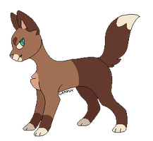 Cat Adopt 3 by lncredible