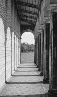 columns by sys66