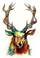 cerf by Odelarte