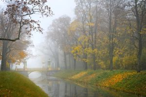 Misty Autumn... _12_ by my-shots