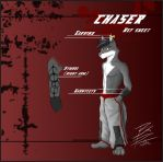 Chaser Reference Sheet by ChaserTech