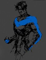 Nightwing by Blackandgoldragon