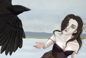 Ravens 2 by Stina-H-Andy