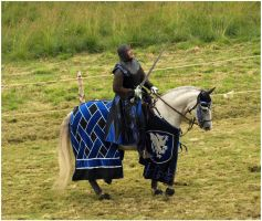 Knight of Camargue X by Eirian-stock
