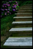 Stairway to Beauty by Carthaginian