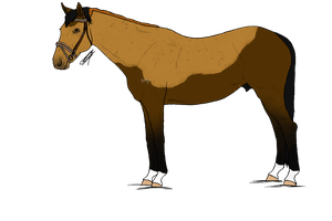 SS-T | WBS Xantheous by HorsesRunninByMe