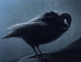 The Three Eyed Crow by DecayingArt