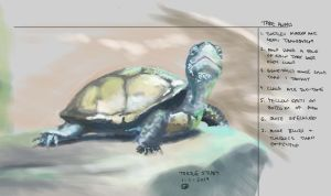Turtle study-2014.01.01 by nickbernstein