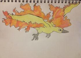 Moltres Pokemon Drawing by Megalomaniacaly