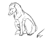 Wolf Sketch by SeamistOfThunderclan