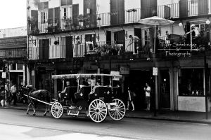 The Street Cart (New Orleans) by SparkVillage