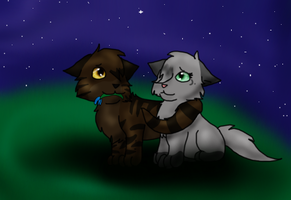 Tigerheart and Dovewing by DucklettsRcute