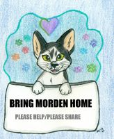 Bring Morden Home by wahyawolf