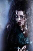 HPDH 2 Bellatrix by LifeEndsNow