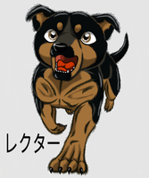 LECTOR, LECTER PUPPY by KITRAM