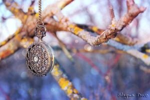 pocket Watch, nature. by ElaynaTeos