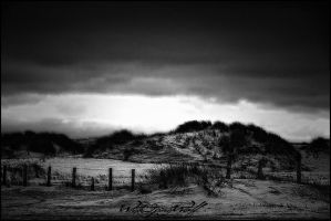 .:dark beach:. by WhiteSpiritWolf