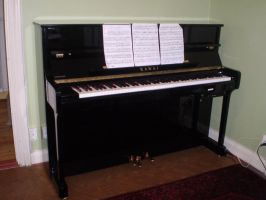 Piano 06 by 116802