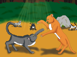 Fireheart and greystripe fight by fluffylovey