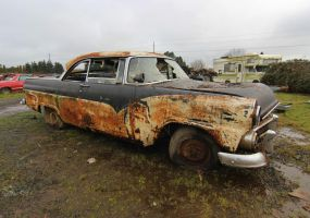 1955 Ford by finhead4ever