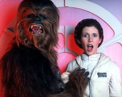 Leia gets frisky with a wookie by TheMcEvilOne