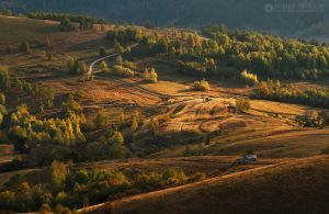 Autumn colors in Apuseni Mountains 17 by adypetrisor
