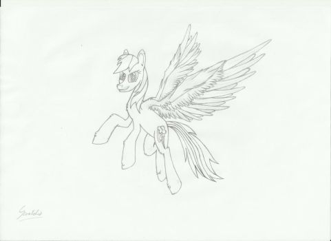 Rainbow Dash sketch by 69norbi