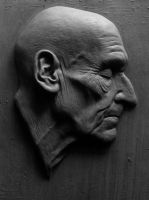 Burroughs relief by bigmagnet