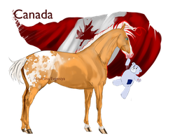 Horse Hetalia:  Canada by Moon-illusion