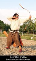 Hungarian Archer 14 by syccas-stock