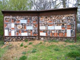 Guinness World Record Bee Home by YesOwl