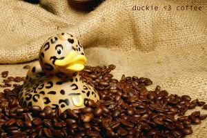 duckie loves coffee by tahnee-r