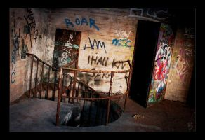 Marks of Decay 1 by RS-foto