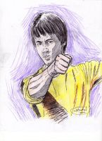 Bruce Lee: The Game of Death by StevenWilcox