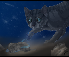 Cinderpelt's Second Chance by xxMoonwish