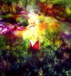 Forest miracle by Andenne