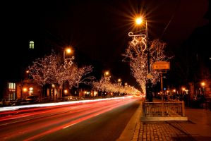 Christmas Lights by Cauldfield