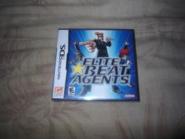 My 67th Nintendo DS Game by Galvan19
