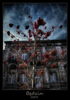 rowan tree by Kyoist