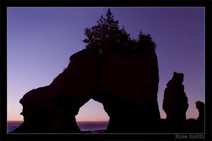 Hopewell Rocks by RoieG